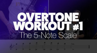 Overtone Workout the 5 note scale