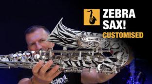 I customised my saxophone zebra sax